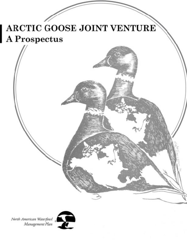The AGJV Prospectus