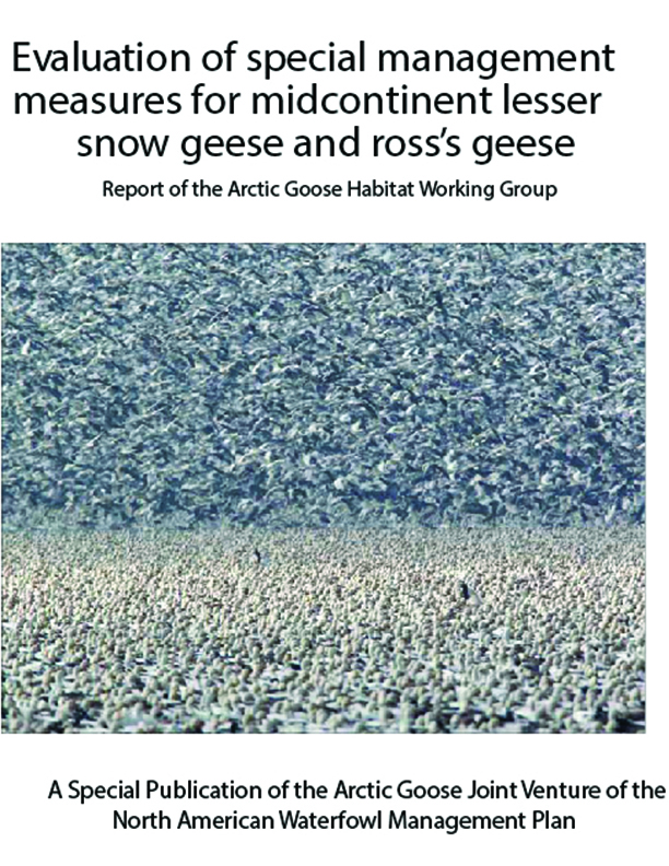 Evaluation of Special Management Measures for Midcontinent Lesser Snow Geese and Ross's Geese