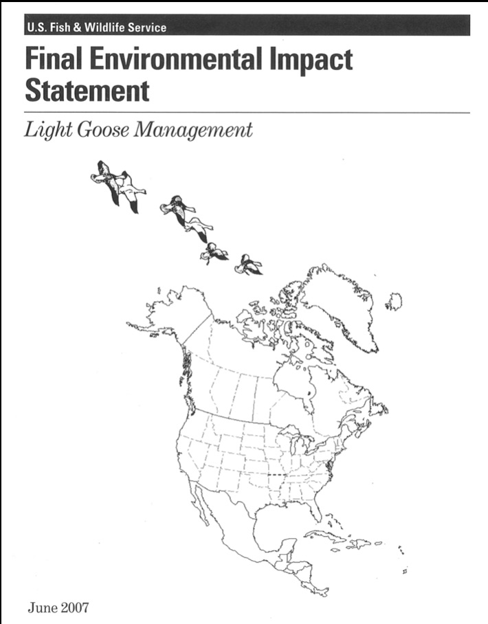 Final Environmental Impact Statement on Light Goose Management