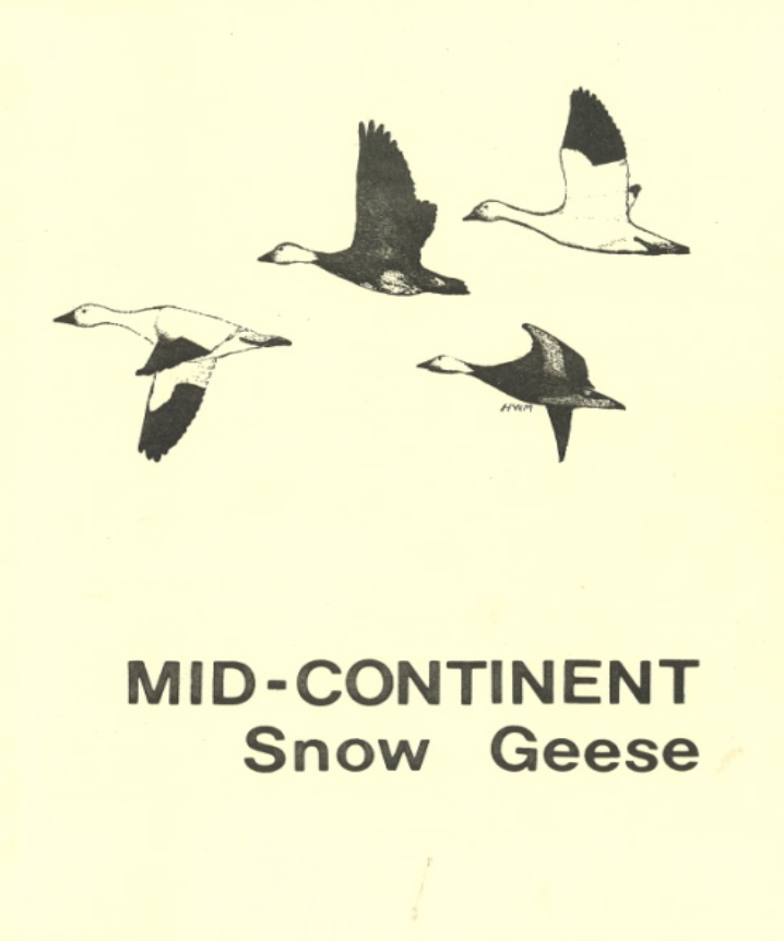 First Midcontinent Snow Goose Management Plan