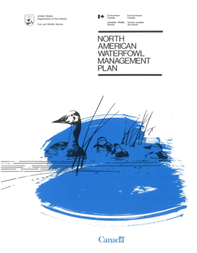 The North American Waterfowl Management Plan (NAWMP)