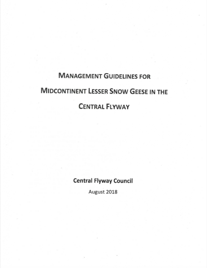 Midcontinent Lesser Snow Goose Management Guidelines in Central Flyway