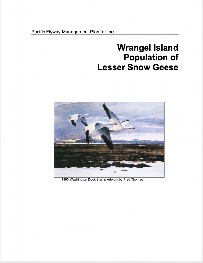 Wrangel Island Lesser Snow Geese Management Plan