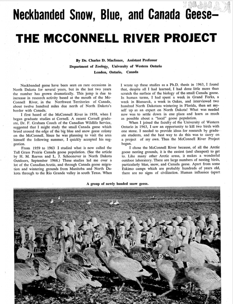 McConnell River Project